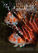 diving adventure cover issue 3 pdf
