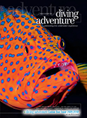 diving adventure cover issue six pdf
