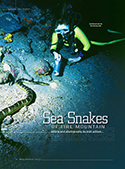 sea snakes of fire mountain pdf