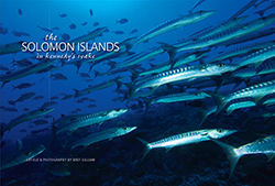 the solomon islands pdf